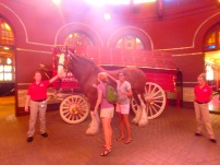 That's a real Clydesdale right there