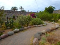 San Ignacio Mission Garden